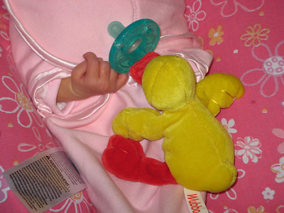 06-06-07 Emily First Day Home_16