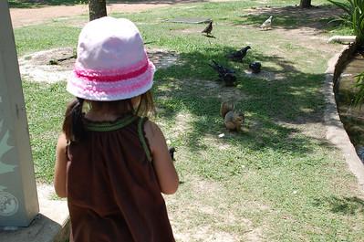 May 2, 2010 - Feeding/Torturing the ducks at Houston Hermann Park