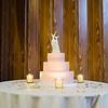 1210-Emily-and-Mitchel-Wedding-21
