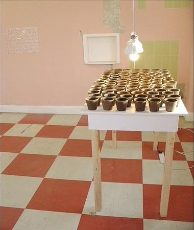 17. Wilson Díaz. The gardener (El jardinero), instalación, sembrado de plantas de coca a partir de semillas, Independent Liverpool, Biennale, Jump ship rat, Liverpool, 2004.