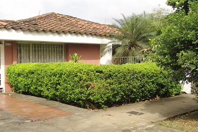 3. Wilson Díaz. Jardines de plantas coca en Cali, fotografía,  2003-2006.
