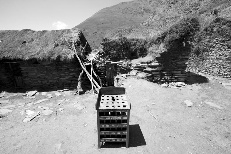 El juego de la vida / The game of life  foto: Domingo Giribaldi del Mar