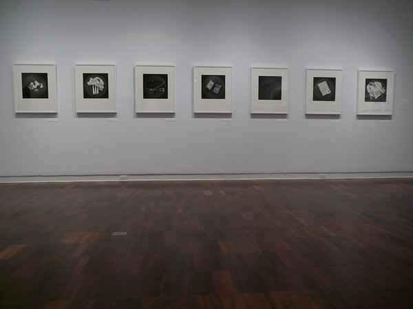 "Installation View of ""Observed: Milagros de la Torre,"" at the Americas Society, New York"