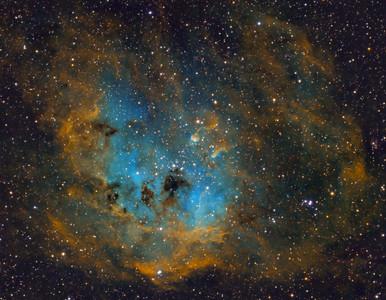 IC 410 - Tadpole Nebula
