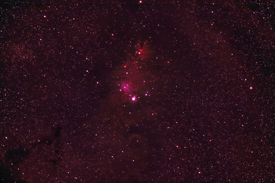 NGC 2264 - Cone Nebula and Christmas Tree Cluster