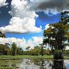 Cloudy at Caddo Lake