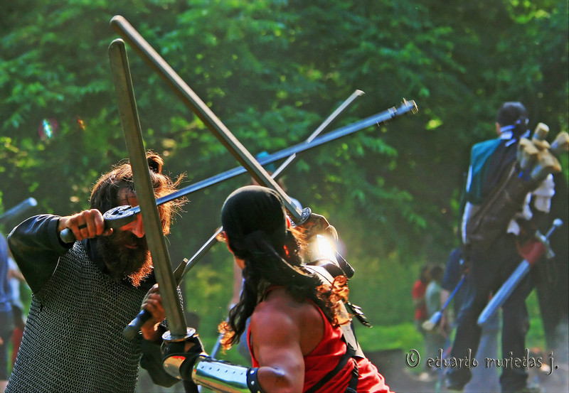 Combat on Mont Royal