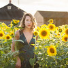 Emma sunflowers Griswoldajs-107-2-2