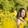 Emma sunflowers Griswoldajs-157-2