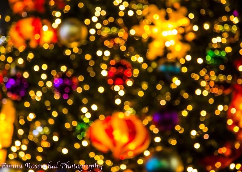 Little Tokyo Christmas Tree #1
