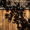 Minimalist Monday:  Wood Fence #2 Silverlake, Los Angeles, CA