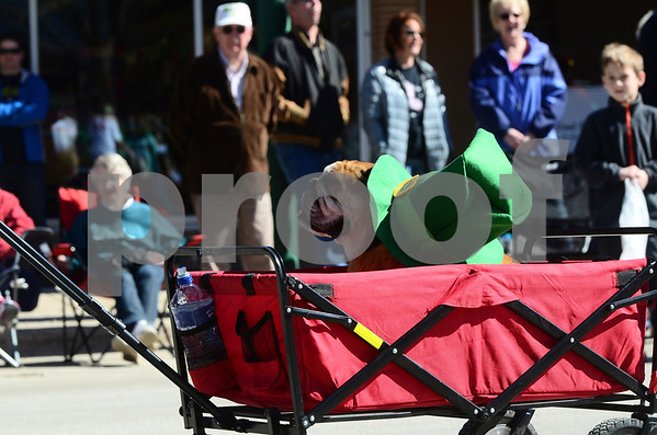 -Messenger photo by Jesse Major<br /> <br /> A dog wearing a green leprechaun hat is pulled through the St. Patrick's Day parade in Emmetsburg Saturday.