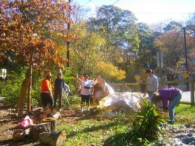 Atlanta Emory Cares - Oakhurst Community Garden - 11.13.10