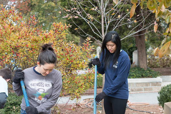 Emory Cares Day: Oakland Cemetery
