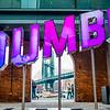 Feelin' Dumbo