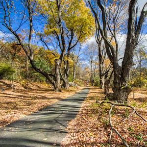 Lincoln, Massachusetts, USA