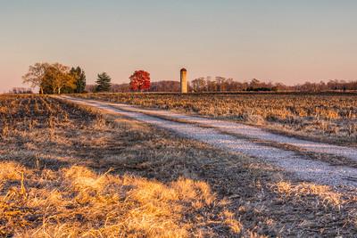 Smyrna Delaware Farm