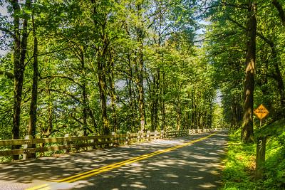 Route 30, Columbia River Gorge, Oregon, USA