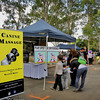 "<a href=""http://massage4dogs.blogspot.com.au/""> Canine Massage Therapist</a>"