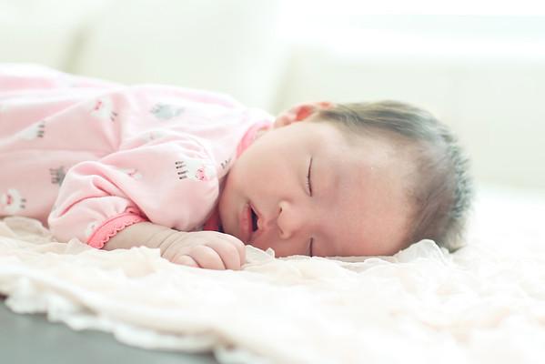 Li Newborn