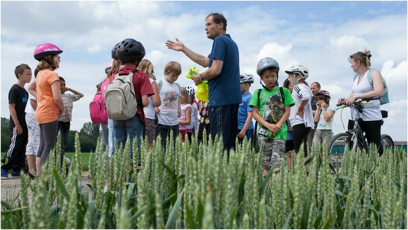 Un petit stop pédagogique dans la plaine du Ried