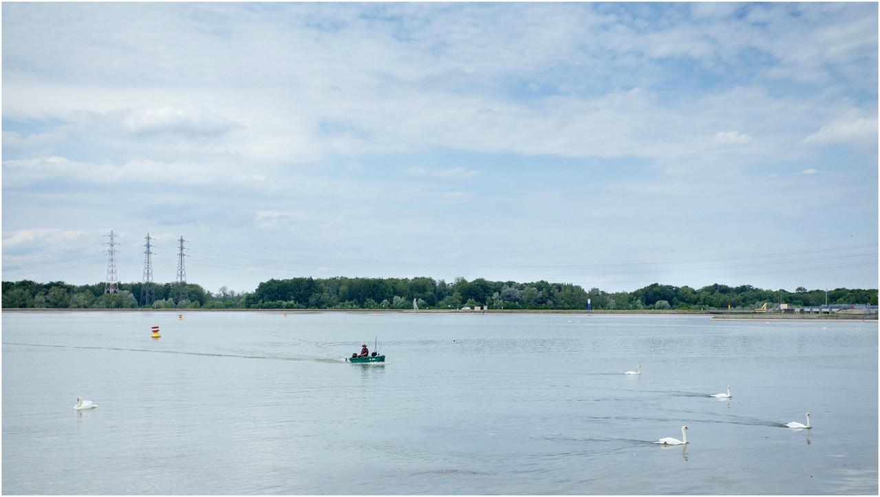 Sur le chemin du retour,  cygnes et pêcheurs.