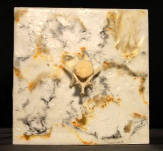 Skull on Marble