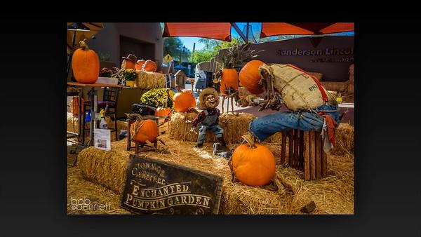 Enchanted Pumpkin Movie