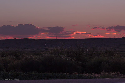 Pink Delight !  Sunset Bernardo NM