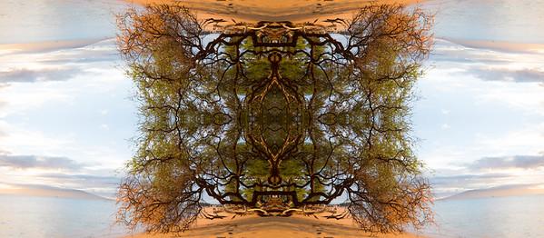 Enchanted Symmetry