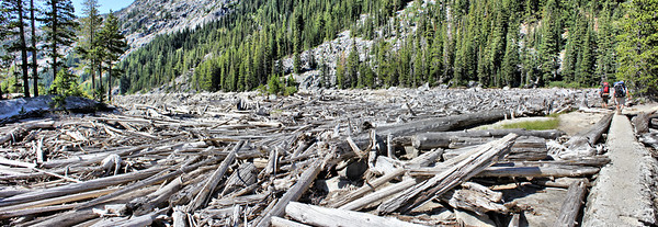 Upper Snow Lake - Usually Floating Logs at Wier - August 2015