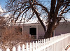Tree, Zaguan House, Canyon Road, Santa Fe, NM