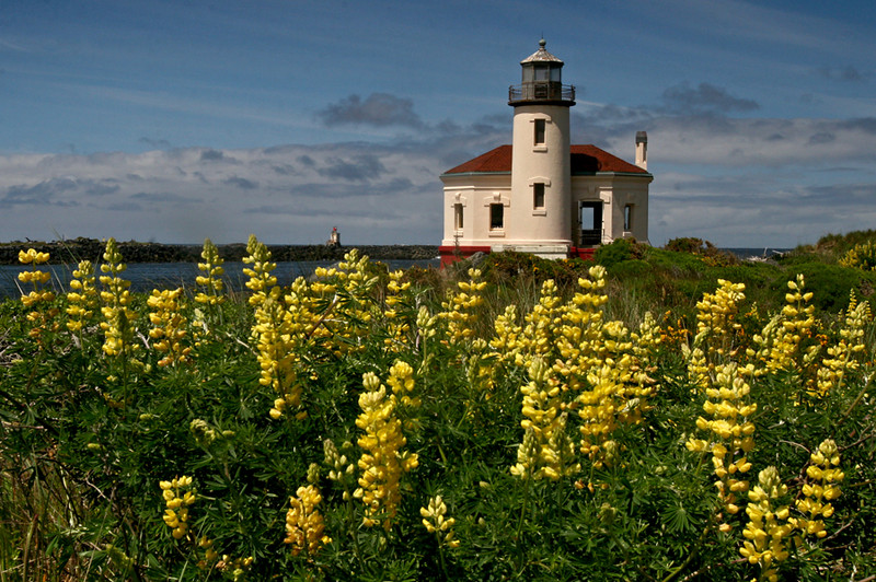 Honorable Mention<br /> Couquille River Lighthouse<br /> Janet Bigalke