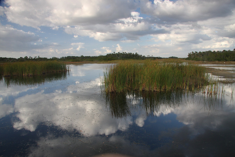 Honorable Mention<br /> Clouds Over the Everglades<br /> Len Messineo