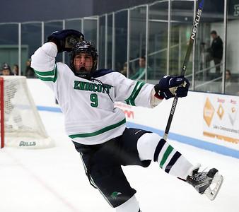 Endicott Men's Ice Hockey 2017-2018