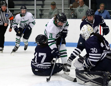 Endicott Women's Ice Hockey 2017-2018