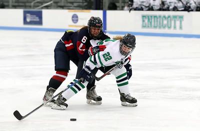 Endicott Women's Ice Hockey vs New England College