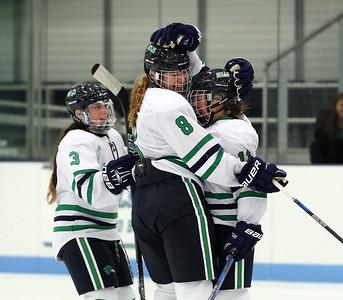 Endicott Women's Ice Hockey vs Nichols