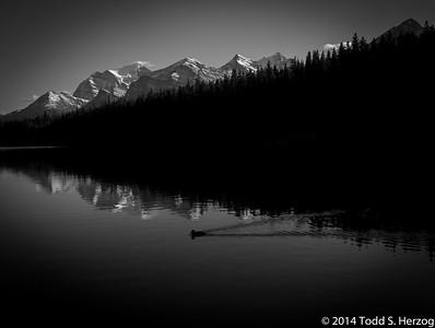 2014 Wyoming-Montanna
