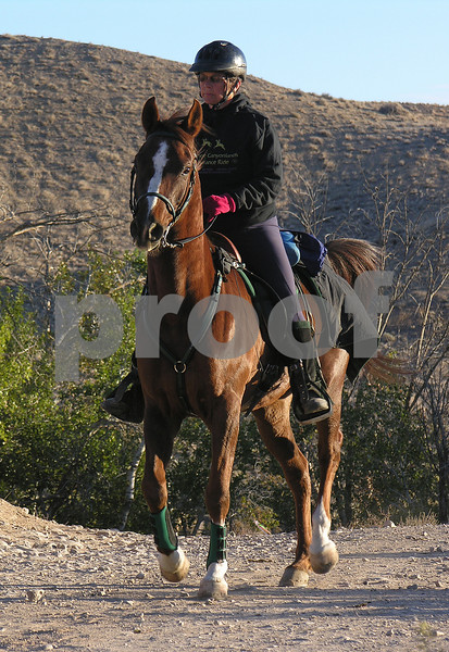 Canyonland D5013