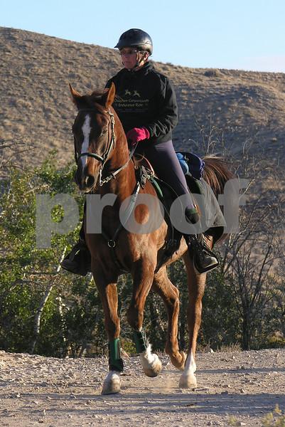 Canyonland D5011