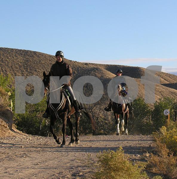 Canyonland D5008