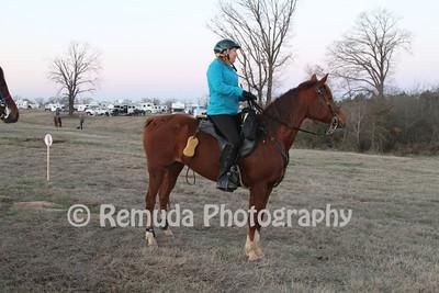 2013 Ride Year