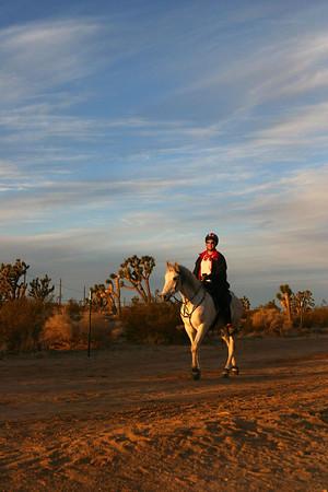 Eastern Scenic Mojave Day 3 (2-5-06)