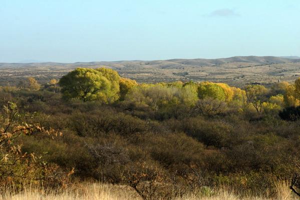 Las Cienegas Pioneer Endurance Ride Dec.1,2,3