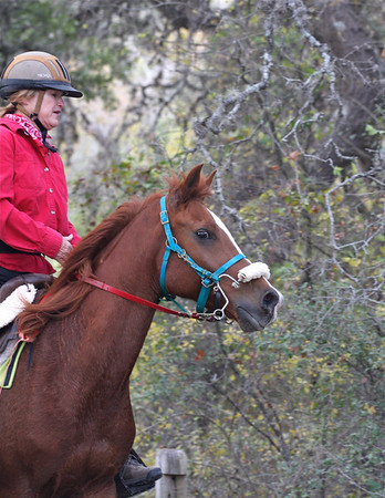 Lone Star Benefit Endurance ride 2012, Bandera, Texas