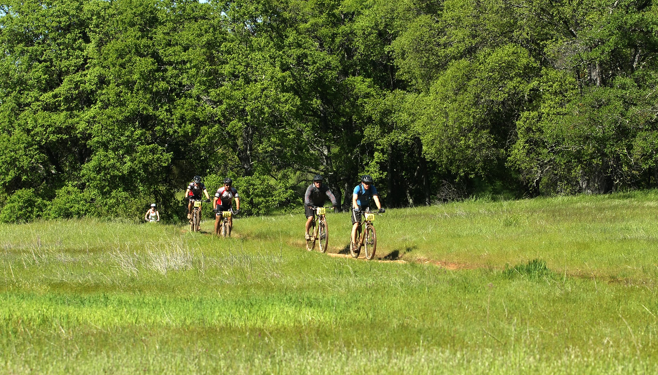Riders rode through meadow vistas.