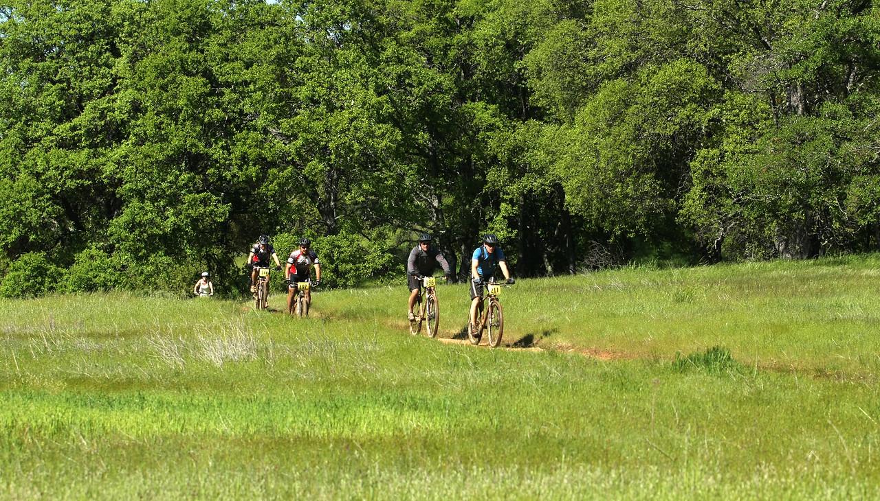 Riders rode through meadow vistas.