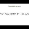 The Evolution of the App - Web Video (Spanish Subtitles)