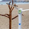 Greenpeace demuestra que Canarias podría abastecerse solo con renovables